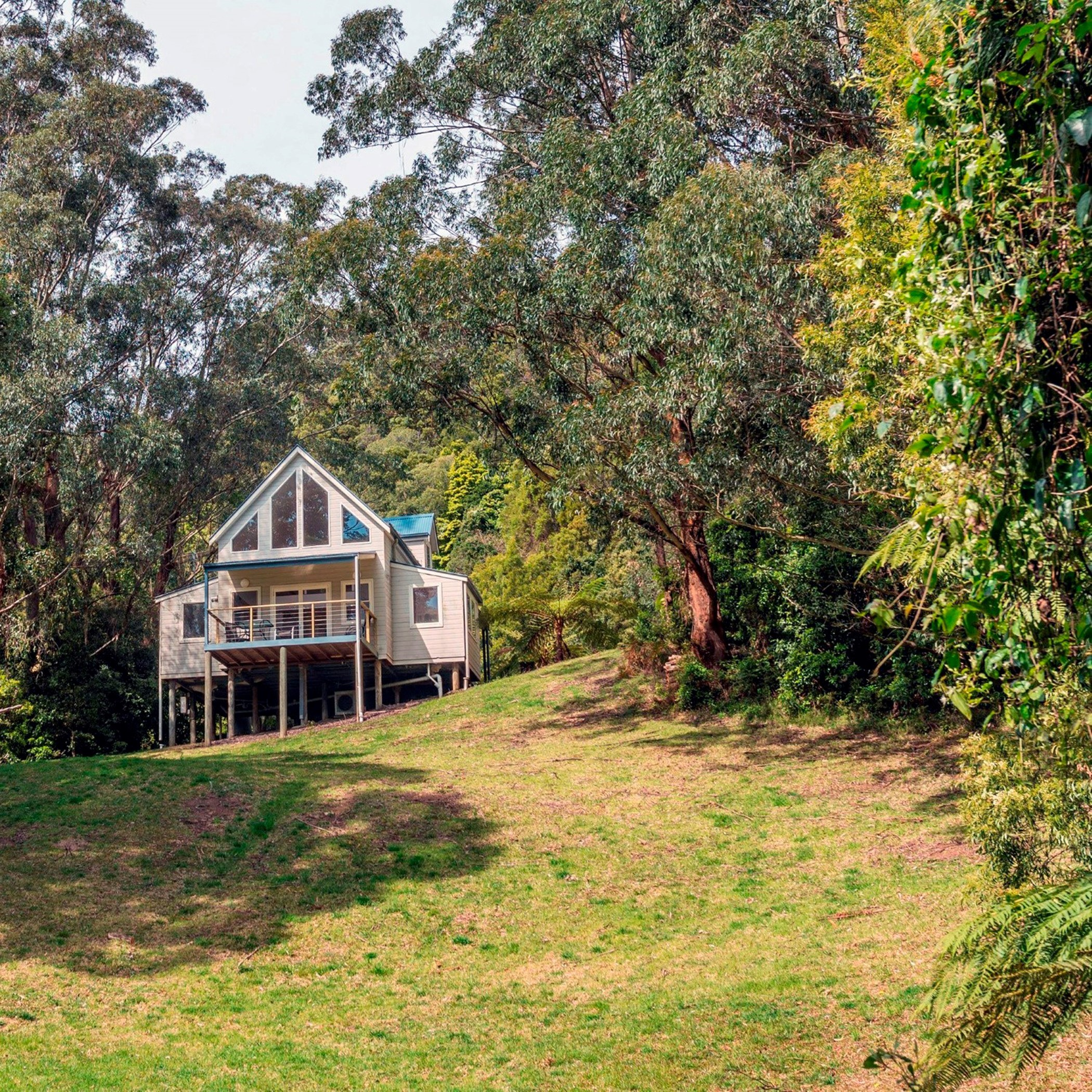 Rainforest Lodge - view of lodge from below