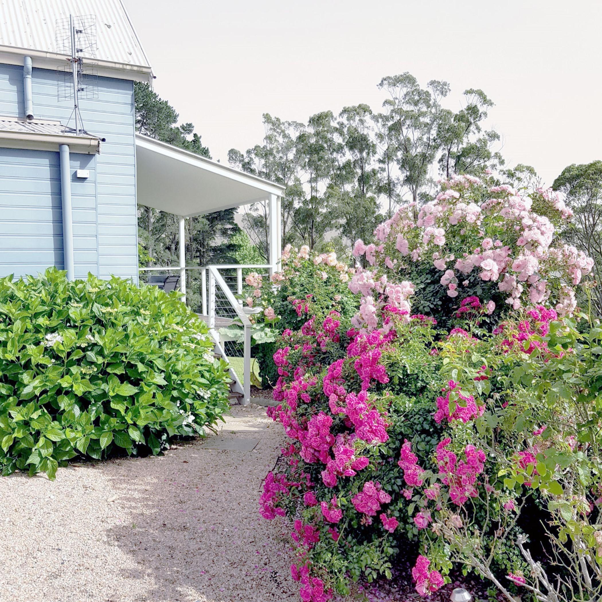Wattamolla Lodge - front driveway entrance